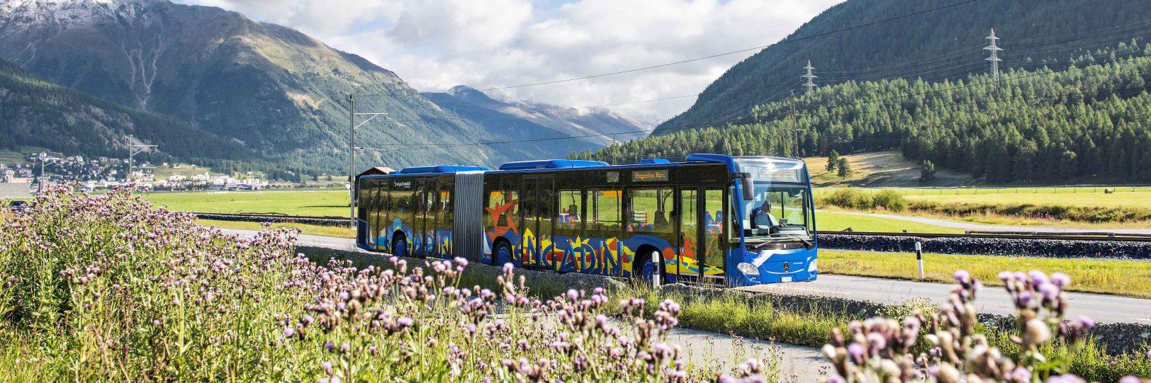 Engadin Bus Sommer Gelenkbus